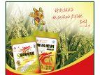 超级稻专刊——《超级稻栽培》